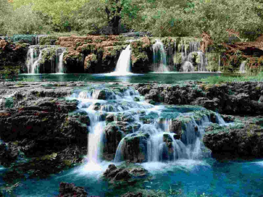 2 175 900x675 - La Naturaleza es un gran Maestro