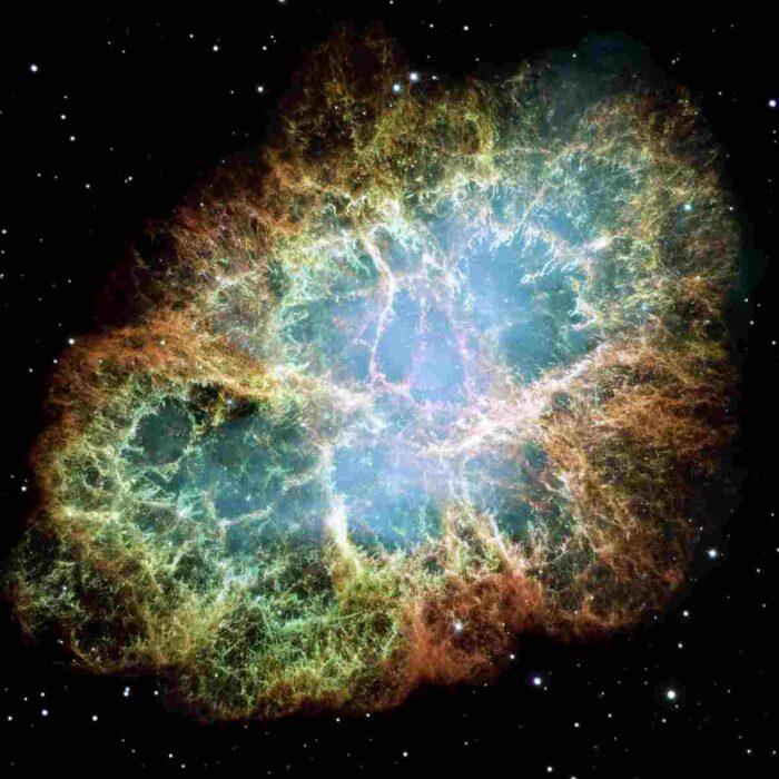 2 183 700x700 - El universo se expresa a través de la evolución