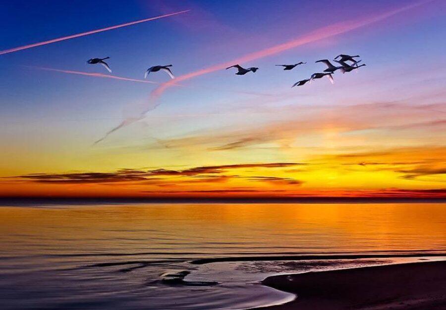 3 169 900x627 - La verdad espiritual está más allá del significado