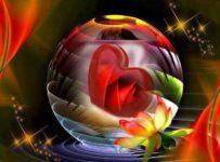 3 211 203x150 - Amor Incondicional