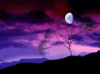3 258 203x150 - Crear la luna en uno mismo